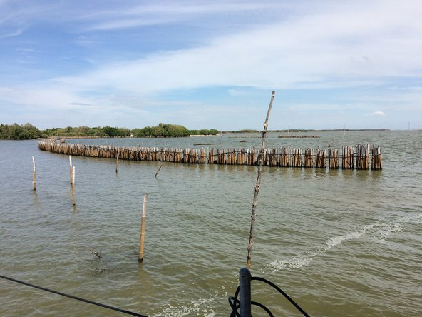 Bamboo fences for wave dissipation in Ban Khun Samut Chin