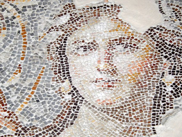 The 'Mona Lisa of the Galilee', an ancient mosaic in Lower Galilee, Israel – an example of a subject that could engage archaeologists, classicists, art historians, experts in religion...