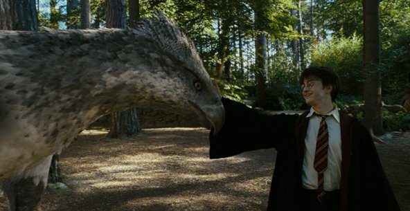 Buckbeak from Harry Potter. Image credit: Warner Bros.